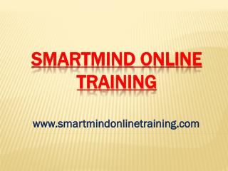 Smartmind Online Training Trainers Following Strategies Review | Smartmind Online Training Review
