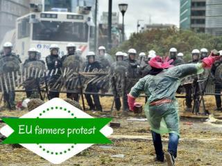 EU farmers protest