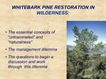 WHITEBARK PINE RESTORATION IN WILDERNESS: