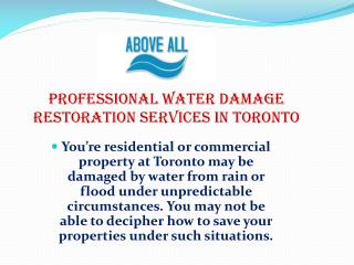 Professional Water Damage Restoration Services in Toronto
