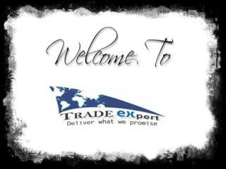 Short clip on TradeExpert.co.in