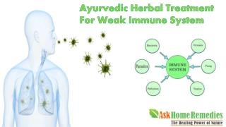 Ayurvedic Herbal Treatment For Weak Immune System