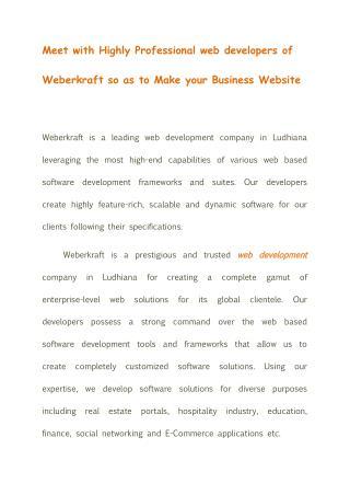 Web Development Company in Ludhiana