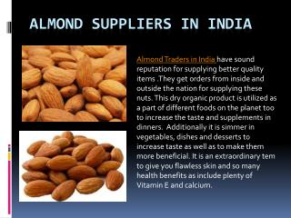 Best Almond Suppliers in India