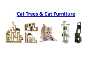 Cat trees and Cat Furniture - Best Gift For Your Cats