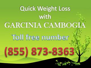 (855) 873-8363 does garcinia cambogia really work