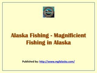 Magnificient Fishing In Alaska