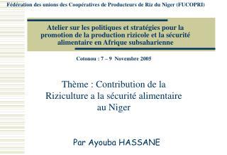 Atelier sur les politiques et strat gies pour la promotion de la production rizicole et la s curit  alimentaire en Afriq