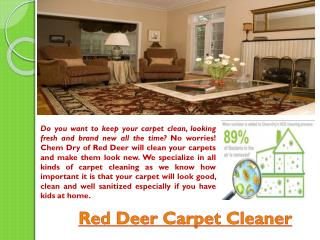 Red Deer carpet cleaning company