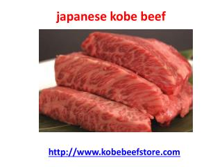 wagyu kobe beef brisket