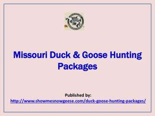 Show Me Snow Geese-Missouri Duck & Goose Hunting Packages