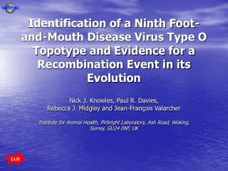 Identification of a Ninth Foot-and-Mouth Disease Virus Type O Topotype and Evidence for a Recombination Event in its Evo