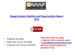 Biogas Industry Worldwide Strategy and 2020 Forecasts