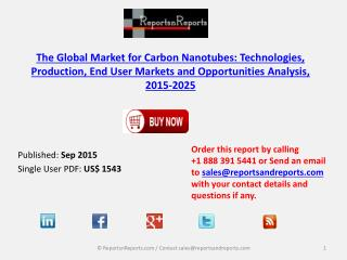 Carbon Nanotubes Industry -Market Size, Growth and Forecast Report 2025