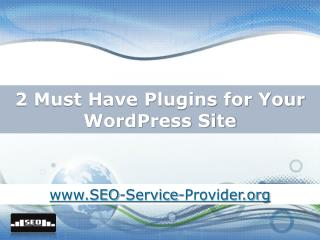 2 Must Have Plugins for Your Wordpress Site