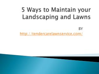 5 Ways to Maintain your Landscaping and Lawns