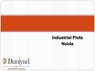 Opportunistic Industrial Plots for sale in Noida