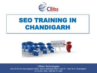 Seo tarining in chandigarh