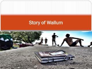 Story of Wallum