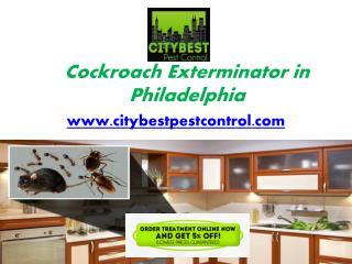 Cockroach Exterminator in Philadelphia - www.citybestpestcontrol.com