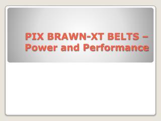 PIX BRAWN-XT BELTS – Power and Performance