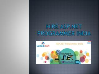 Hire ASP.NET Programmer India