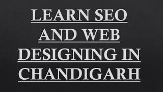 Learn SEO and Web Designing Course in Zirakpur.