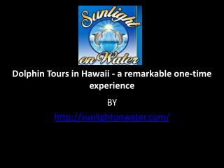 Dolphin Tours in Hawaii