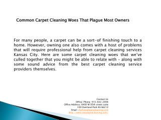 Steadyprocleaning.com Kansas City Carpet Cleaning Services