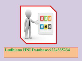 Ludhiana HNI Database-9224335234