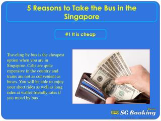5 Reasons to Take the Bus in the Singapore