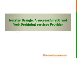 Noxster Orange: A successful SEO and Web Designing services Provider