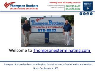 Pest control & termite service   thompson exterminating.com