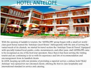 Hotel Antelope