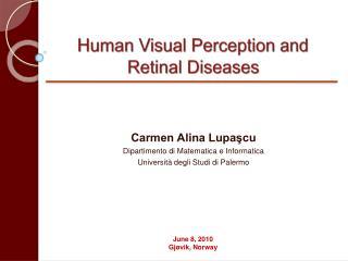 Human Visual Perception and  Retinal Diseases