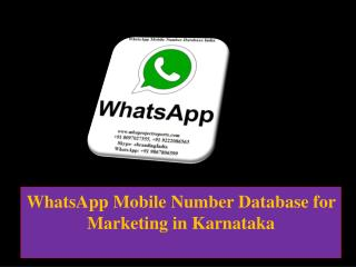 WhatsApp Mobile Number Database for Marketing in Karnataka
