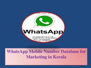 WhatsApp Mobile Number Database for Marketing in Kerala
