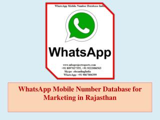 WhatsApp Mobile Number Database for Marketing in Rajasthan