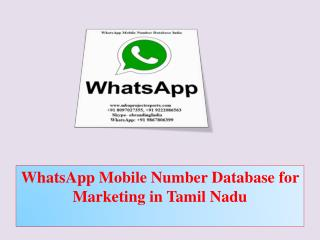 WhatsApp Mobile Number Database for Marketing in Tamil Nadu