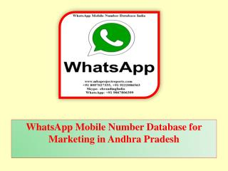 WhatsApp Mobile Number Database for Marketing in Andhra Pradesh