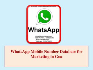 WhatsApp Mobile Number Database for Marketing in Goa