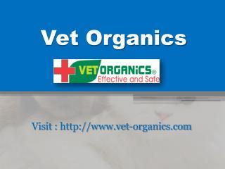 Dog Ear Mites - www.vet-organics.com