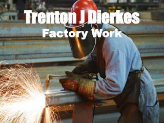 Trenton J Dierkes - Factory Work