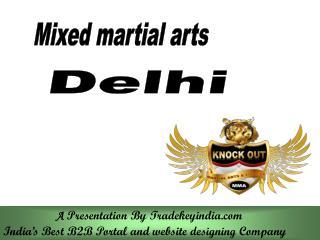 kickboxing classes in Delhi,kickboxing training in India,kickboxing courses