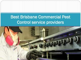 Best Brisbane Commercial Pest Control service providers