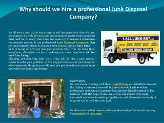 Why should we hire a professional Junk Disposal Company?