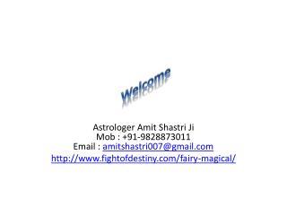 Fairy Magical       9828873011
