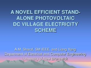 A NOVEL EFFICIENT STAND-ALONE PHOTOVOLTAIC DC VILLAGE ELECTRICITY SCHEME