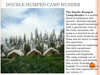 DOUBLE HUMPED CAMP HUNDER