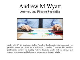 Andrew M Wyatt attorney